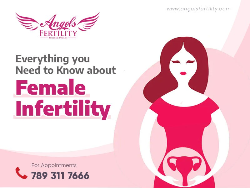 Everything you need to know about Female Infertility
