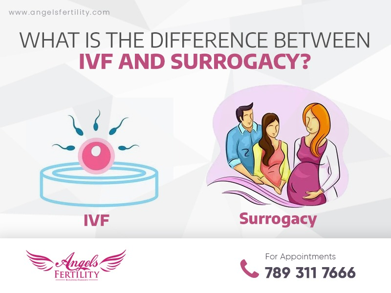 What is the Difference Between IVF and Surrogacy?
